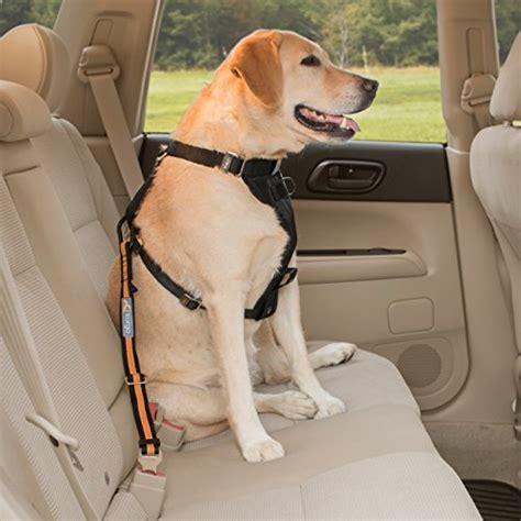 puppy seat belt kurgo direct to seatbelt tether tm seat belt car seatbelt mypointsaver