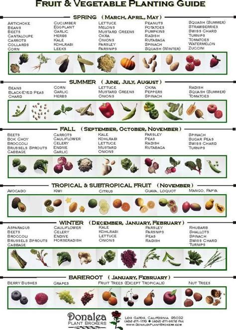 Calendar When To Plant Vegetables Search Results For Planting Calendar For Vegetables
