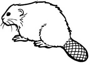 How To Draw A Beaver Coloring Page  Sun sketch template