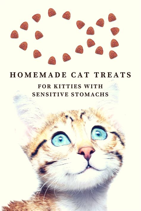 cat food for sensitive stomach ftempo