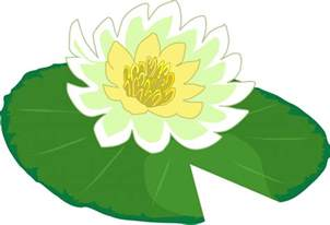 lily pad picture free download clip art free clip art on clipart library