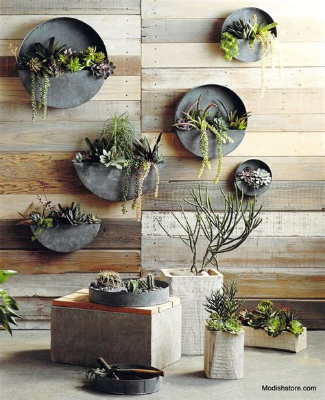 best 25 wall planters ideas on framed
