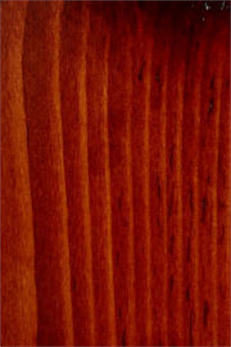 charming Door Colors For Brown House #2: Pine%20Master%20Cherry.JPG