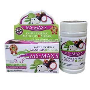 kapsul ms max s kapsul manggis sirsak alzafa store
