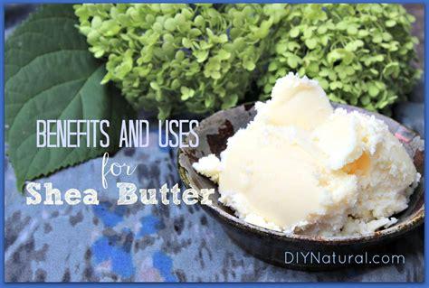 Shea Butter Benefits by Shea Butter Benefits And Favorite Shea Butter Recipes