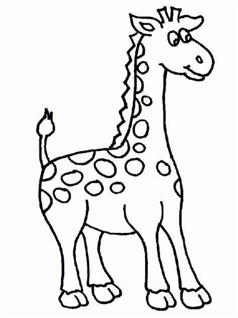 imagenes jirafas para pintar jirafas bonitas para pintar