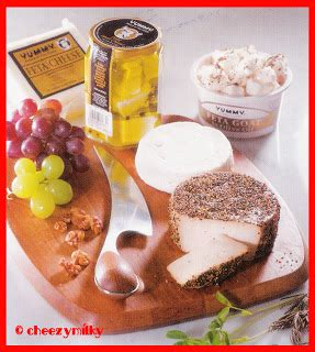 all about dairy products milk cheese yogurt yummy