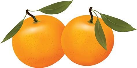 orange clipart orange clip free clipart panda free clipart images