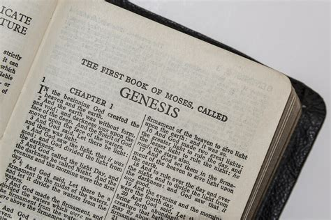 my book of genesis books the message in the book of genesis