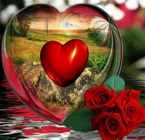 imagenes de corazones i flores paisajes flores corazones animales y otras cositas mas