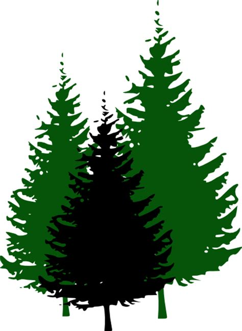 Evergreen Tree Clip by Trees And Mountain Clipart Clipart Suggest