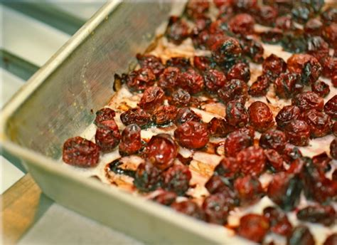 can dogs eat dried cranberries flash in the pan sugar free oven dried cranberries heller