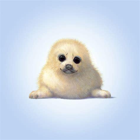 baby seal pup seal pup canvas print canvas photowall