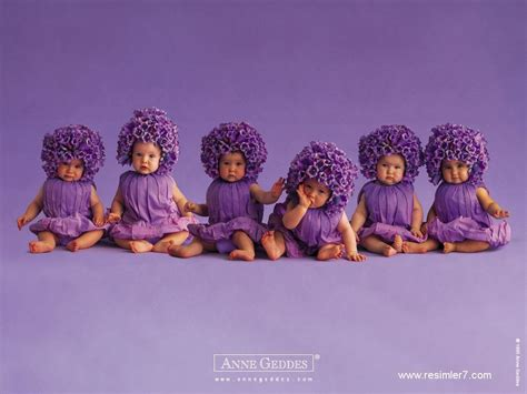 wallpaper flower baby sweety babies images purple flower babies for sylvie hd