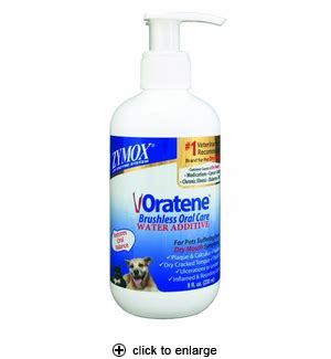 zymox for dogs zymox oratene water additive for dogs cats 8oz
