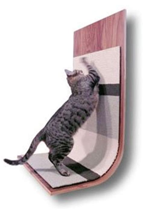 Protect Furniture From Cats by Cat Scratching Post Satisfy Your S Instinct To Scratch