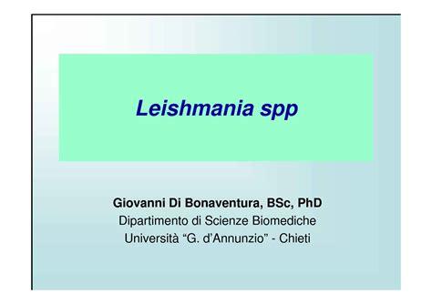 dispense microbiologia leishmania spp leishmaniosi dispense