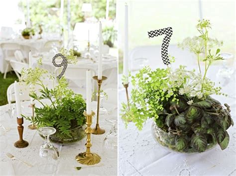 live centerpieces table inspiration for living wedding table centrepieces