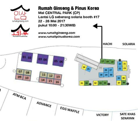 Anggur Ginseng rumahginseng beli ginseng ginseng korea indonesia