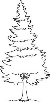 Pine forest coloring pages pine tree coloring page