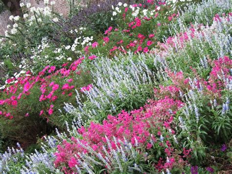 german garden jardin