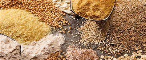 alimentazione senza proteine animali gli alimenti per i vegetariani diety3
