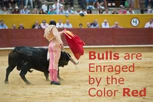 are bulls color blind bulls are enraged by the color don t believe that