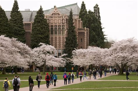 City Of Seattle Ranking Mba by Top 10 Colleges For An Degree In Seattle Wa