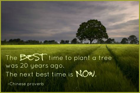 When Is The Best Time To Start A Vegetable Garden Vera Burnayev On Quot The Best Time To Plant A Tree