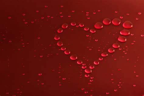 images of love wallpaper hd beautiful love hd wallpapers hd wallpapers high