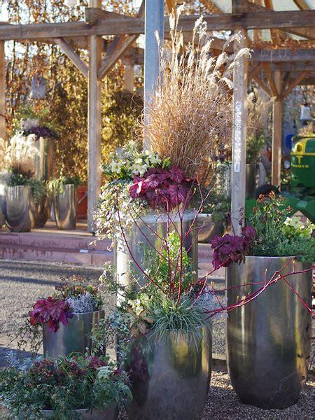 Pflanzengestaltung Garten by Winterliche Gestaltungsideen Mit Pflanzen