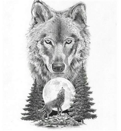 30 best stylized wolves images on wolf pencil and in color wolf
