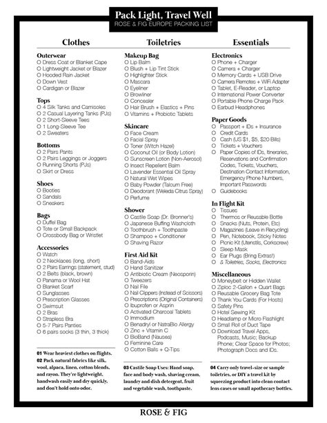5 disney cruise packing list gcsemaths revision