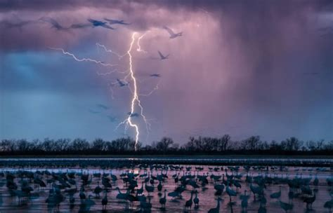 Imagenes Nuevas Las Mejores   national geographic las mejores fotograf 237 as del mundo