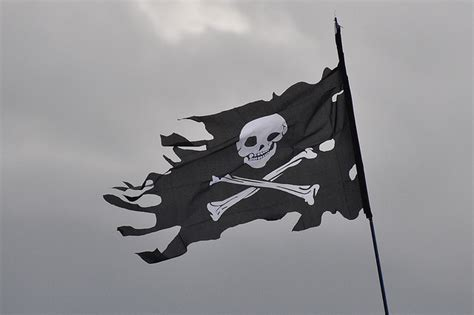 nyc tattoo license test why did pirates fly the jolly roger scientific american