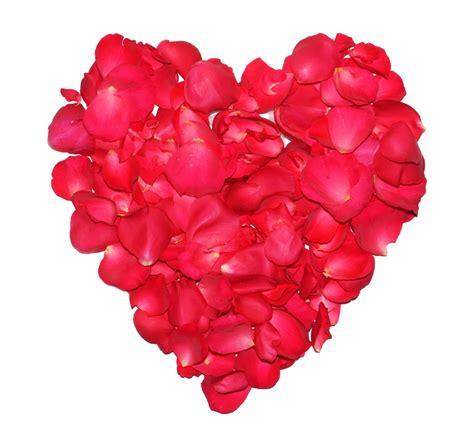 Bilder Roten by Valentinstag Herz Aus Roten Rosenbl 252 Ten Lizenzfreie