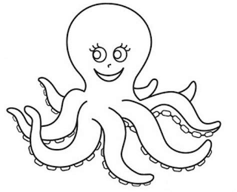 octopus coloring pages preschool free animals octopus printable coloring pages for