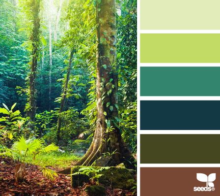 organic colours incorporate the green shades of grass color wander design seeds color combos and favorite color