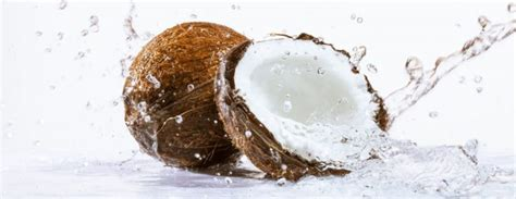 Can You Put Coconut Water In With Your Detox Drinks by Coconut Water Nature S Sports Drink Swop