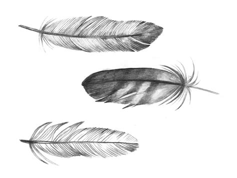 dreamcatcher feathers me and my pup dream catchers feathers tattoos oh my