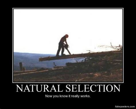 natural selection cartoons memes funnies pinterest