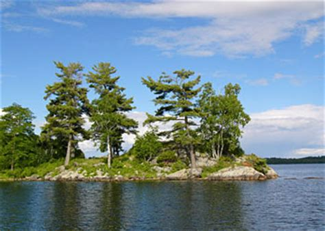 boat rental richmond mn pelican lake orr minnesota pelican lake family fishing