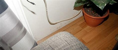 richtig lüften bei schimmel quadratisches schlafzimmer einrichten