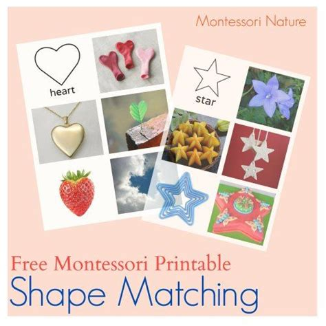 montessori printables for preschool 98 best images about shapes color activities preschool