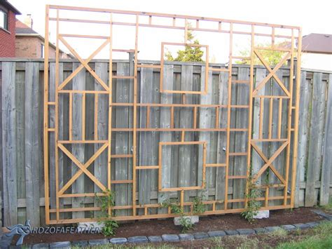 build a trellis 15 privacy fences that will turn your yard into a secluded oasis hometalk