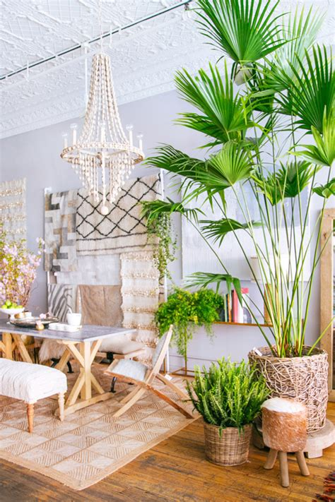 tropical home decorations mix in tropical style travelshopa guides