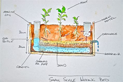 Wicking Planter Box by How To Make A Mobile Forest Garden With Wicking Bed