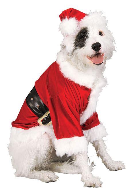 christmas outfits ideas  dogs inspirationseekcom