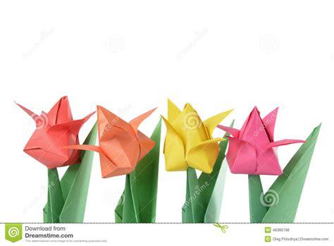 Origami Vedio - origami martin s origami tulip origami tulip