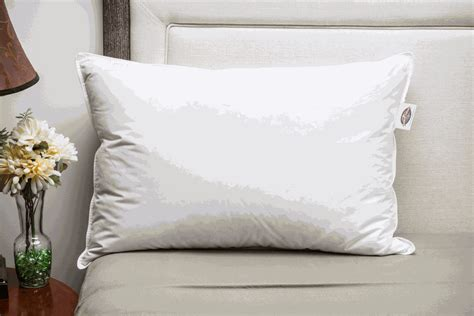 Pacific Coast Touch Of Pillows by Pillows